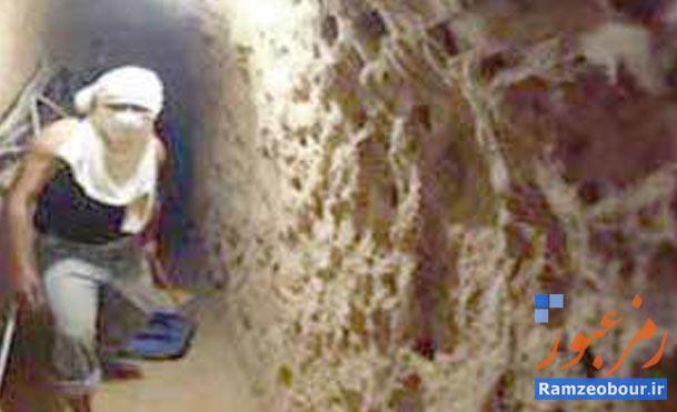 مجازات: زندان با اعمال شاقه  جرم: قاچاق سلاح به غزه