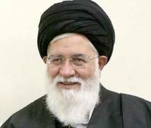 شورای رهبری مبنای فقهی ندارد/ تعابیر هاشمی رفسنجانی  درباره رهبر انقلاب در عملکرد او بروز ندارد!